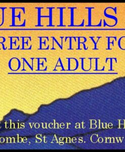 Free entry voucher for one adult